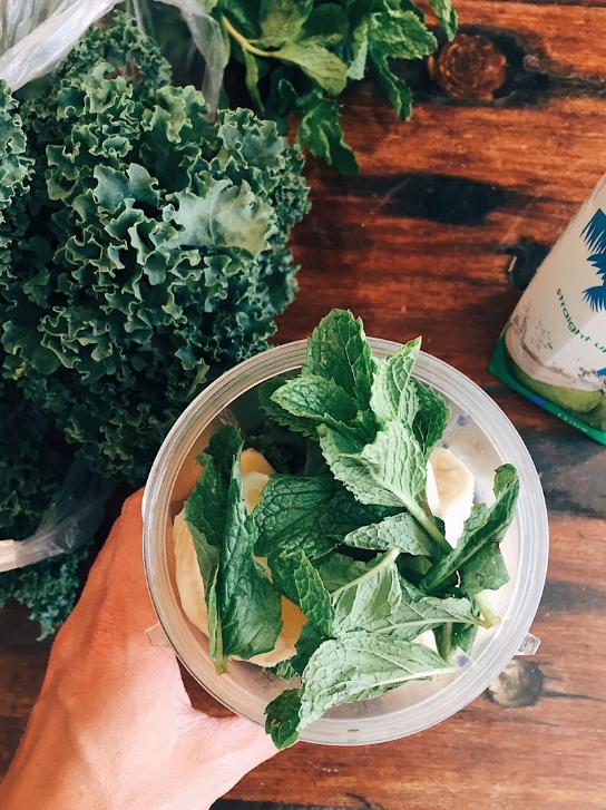 Kale leaves, fresh mint, frozen banana, coconut water.