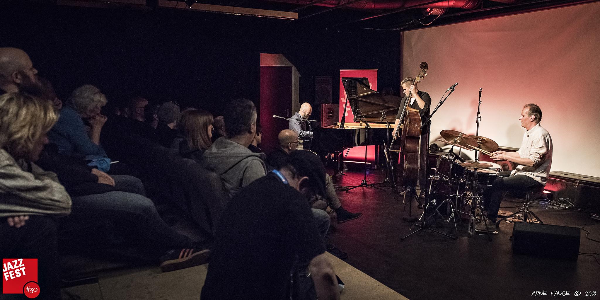 180511_Kari Ikonen Trio @ Cinemateket_006.jpg