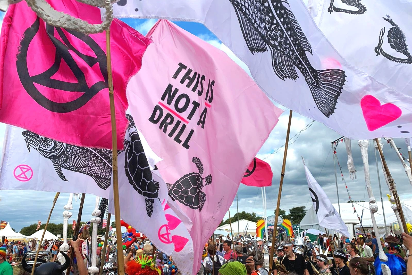 EXTINCTION REBELLION REBEL REBEL STAGE -