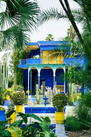 Dreaming of the sun – The Majorelle Garden, created by the French cabinetmaker Louis Majorelle, and restored by the couturier Yves Saint Laurent, Marrakech, Morocco