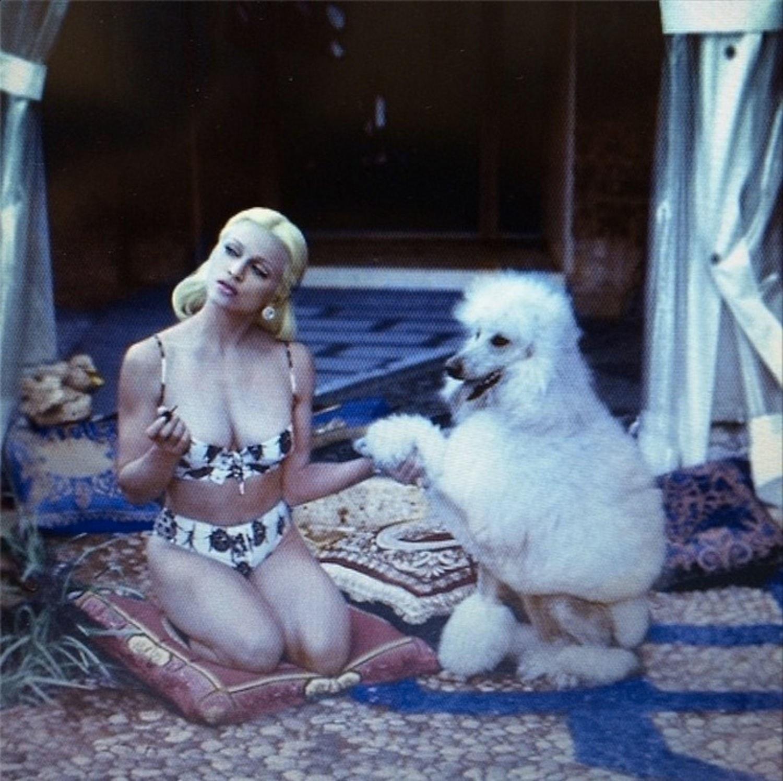 fashion-2014-12-madonna-versace-campaign-poodle-1995-main.jpg