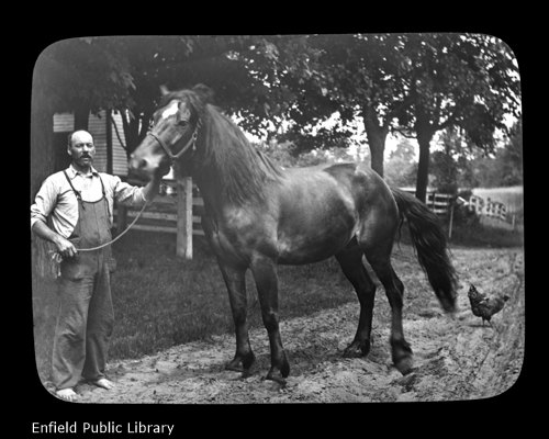 James Steele and His Horse