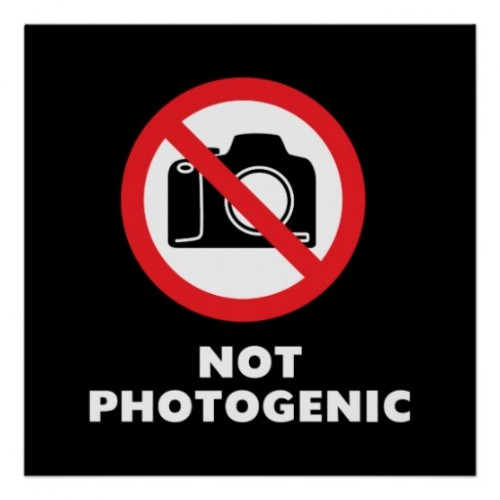 photogenics-500x500.jpg
