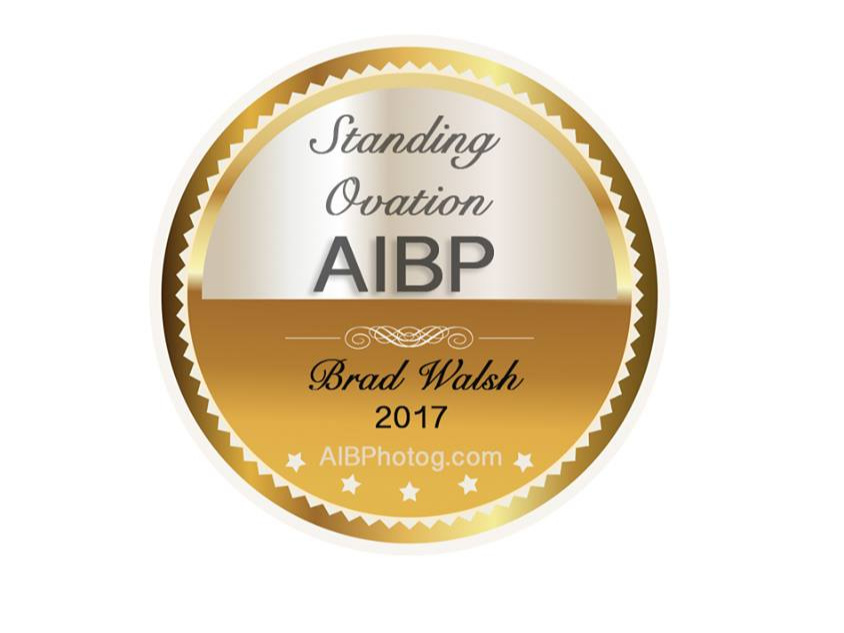AIBP+Standing+Ovation+Award+Seal+2017.jpg
