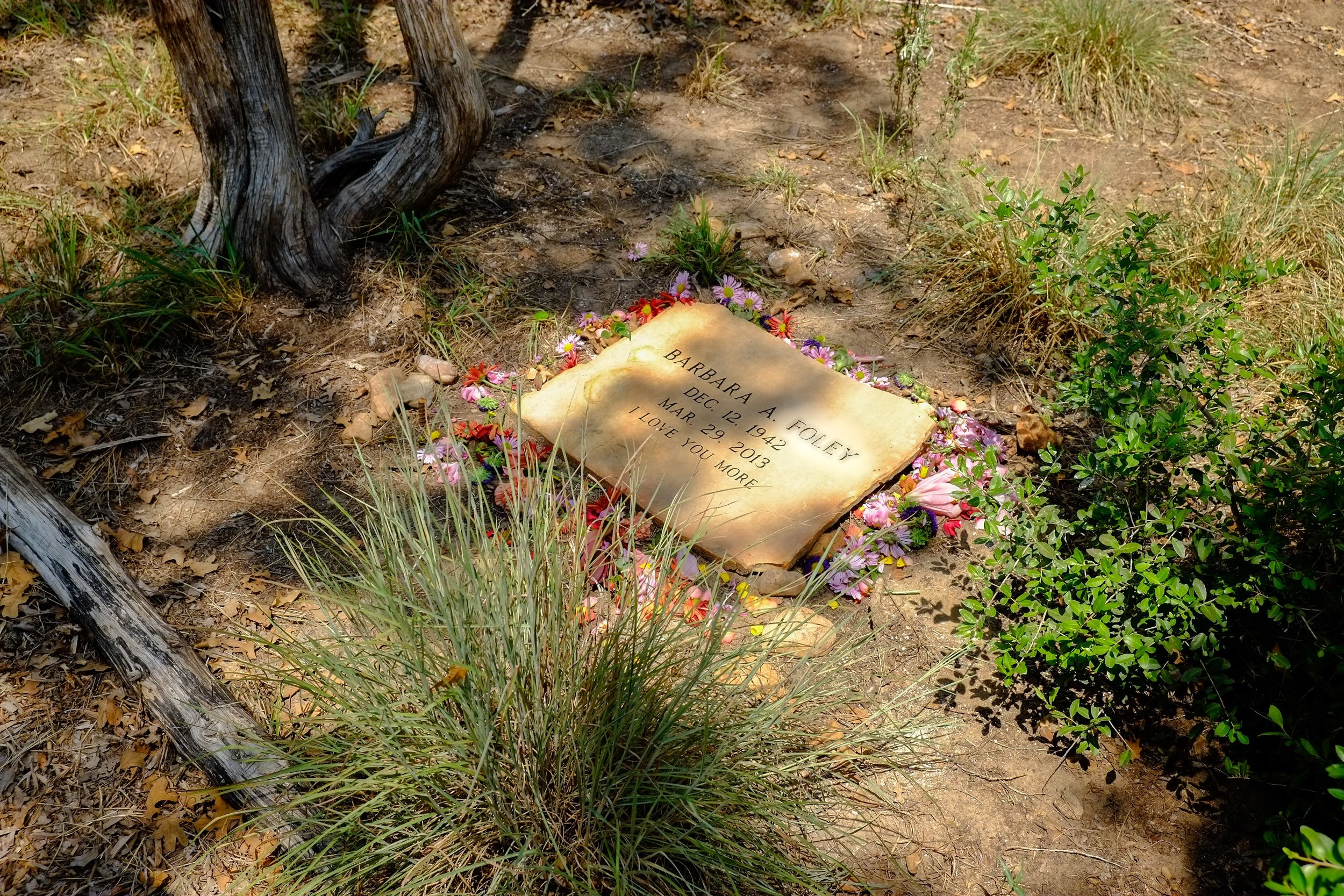 Texas: Eloise Woods Community Natural Burial Park