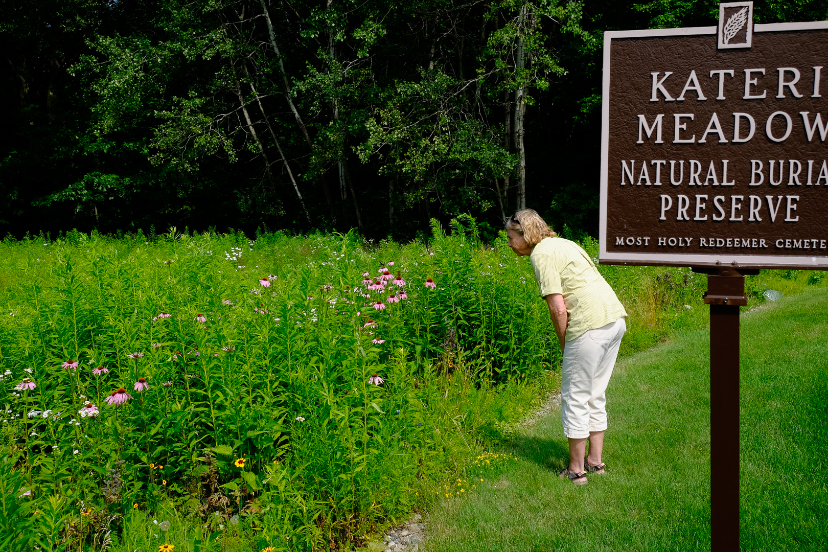 Kateri Meadow Natural Burial Preserve near Schenectady, NY  photo by Tom Bailey