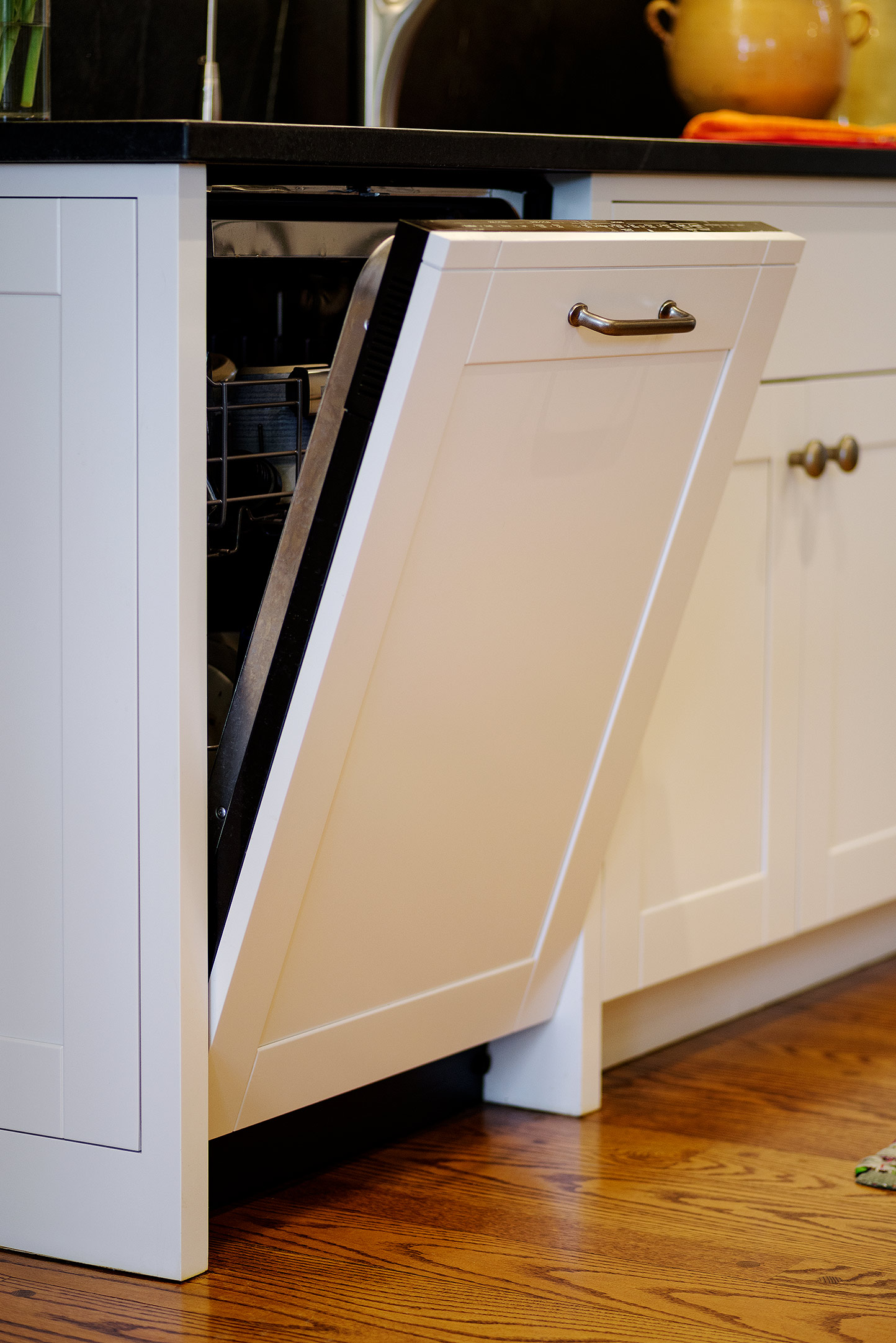Dishwasher Appliance Panel