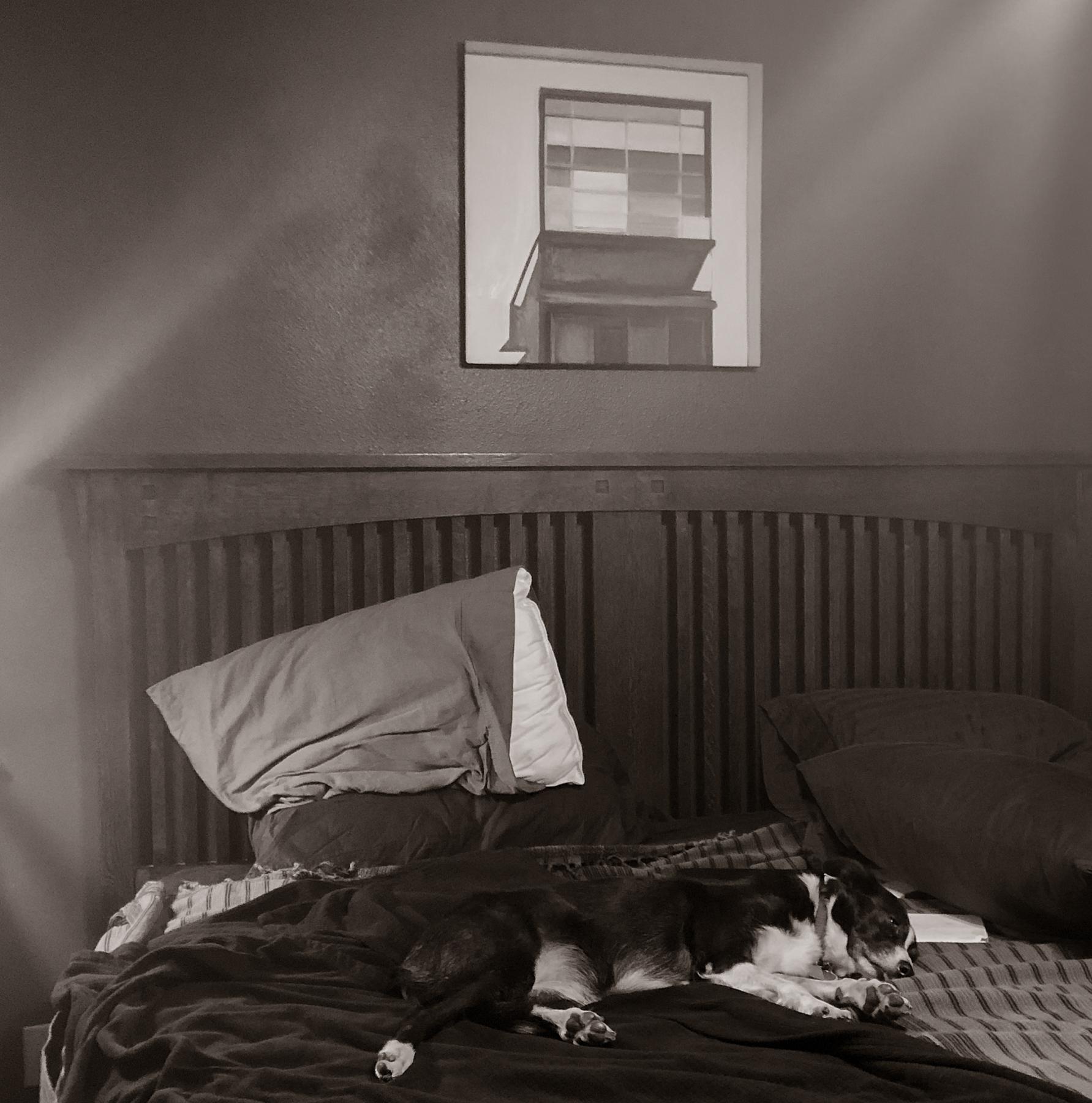 Fiona Morning Nap-9087.jpg