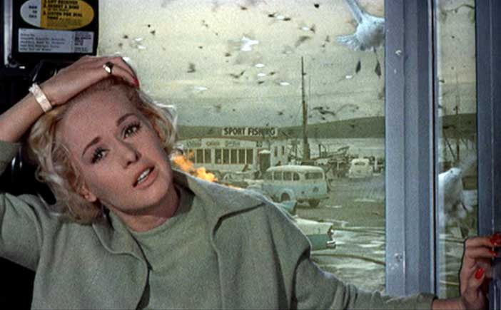 702full-the-birds-(1963)-screenshot.jpg