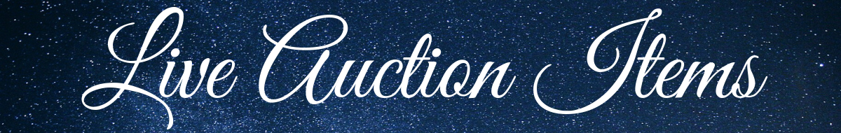 Live Auction Items (1).png