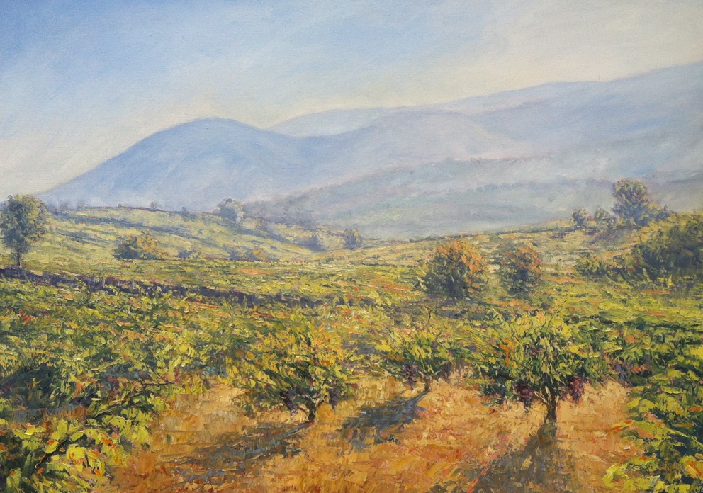 Bekaa Vineyards. Tom Young, oil on canvas