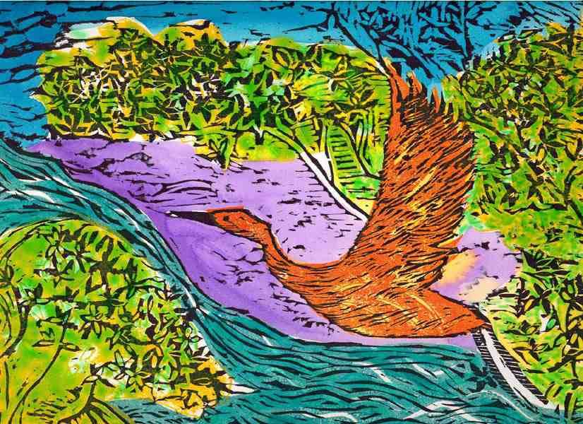 Life In Mangroves