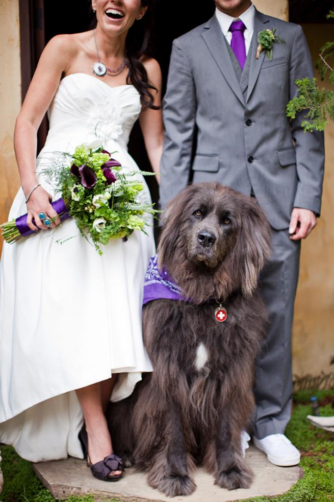 newfoundland-wedding