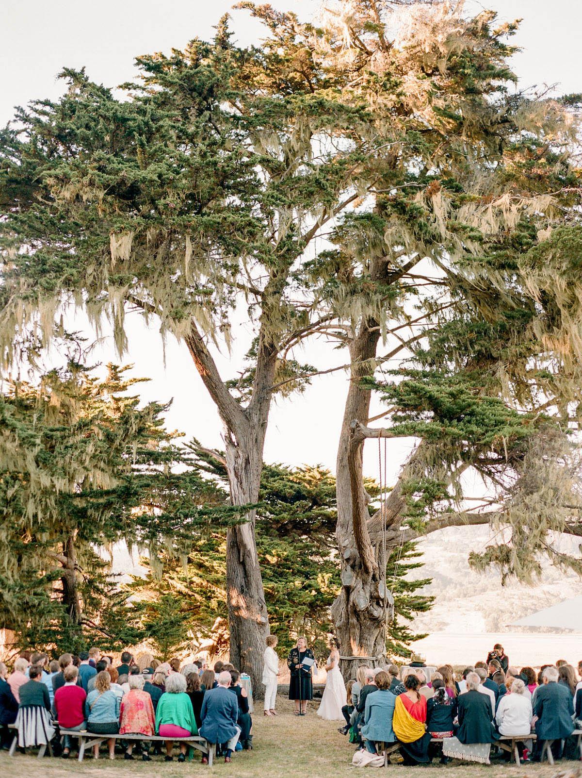 13-ceremony-under-tree.jpg