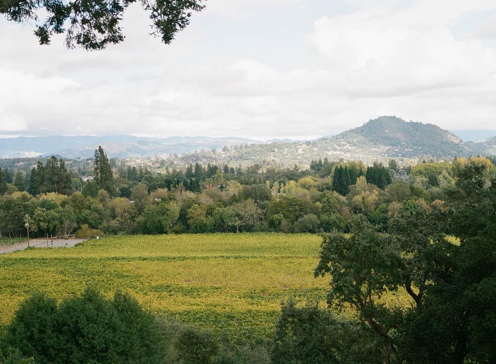 3-madrona-manor-view.jpg