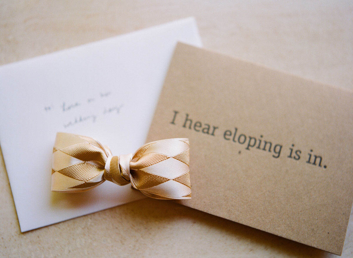 8-i-hear-eloping-is-in-card.jpg