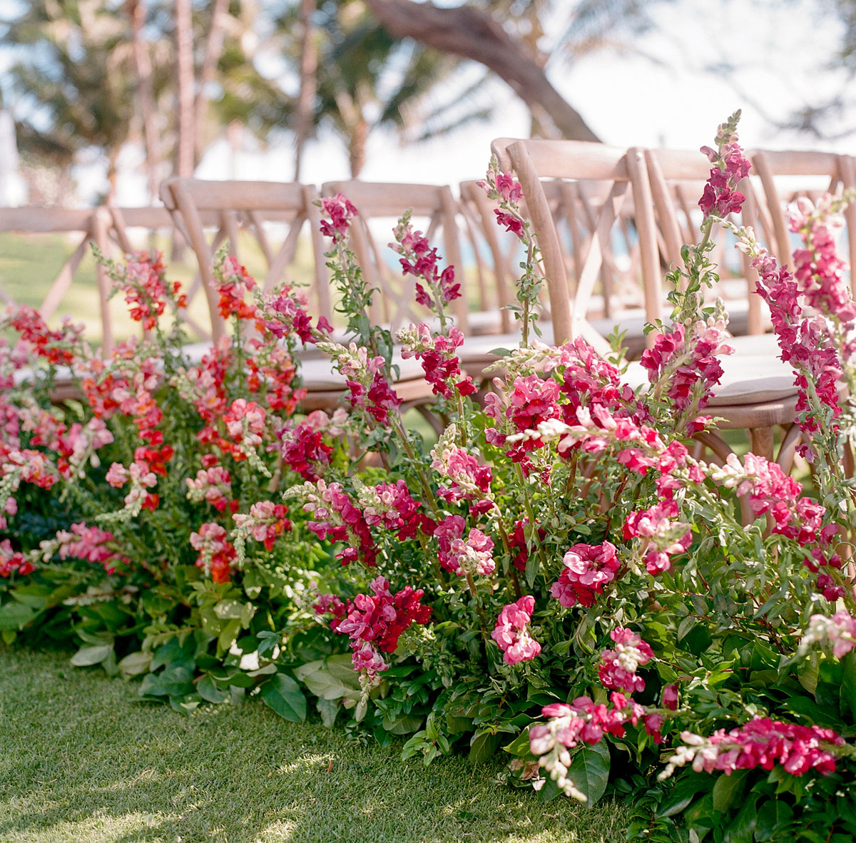 19-pink-ombre-ceremony-aisle.jpg