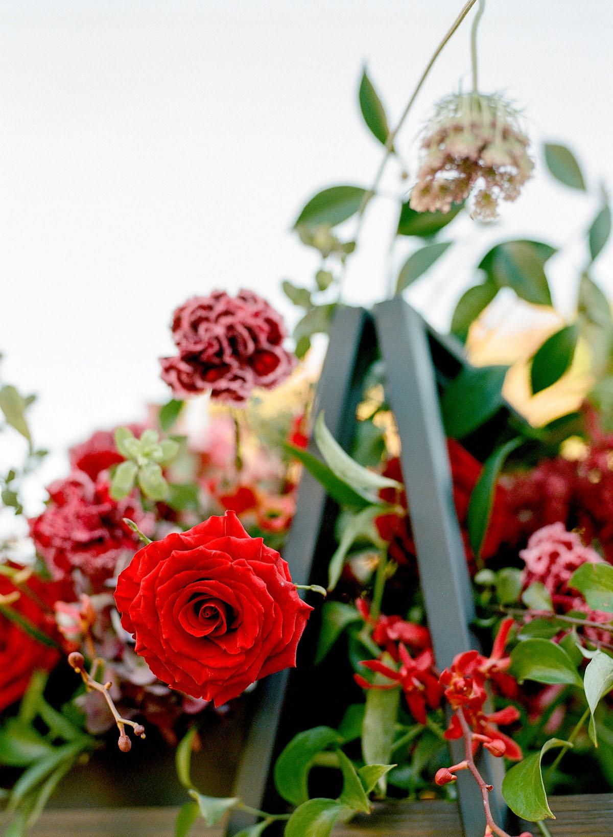 48-red-rose-perfect.jpg
