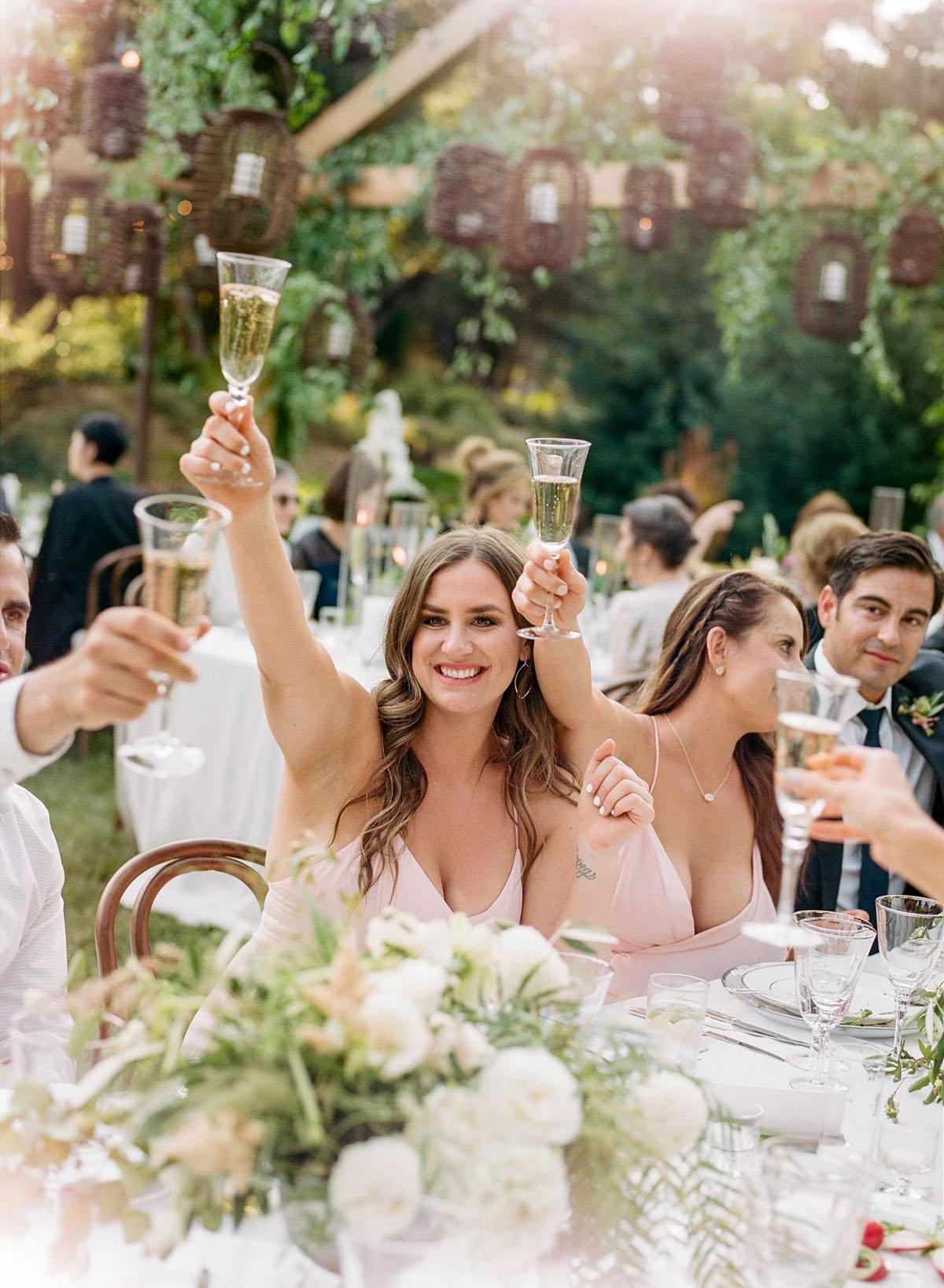 52-guests-toasting-wedding.jpg
