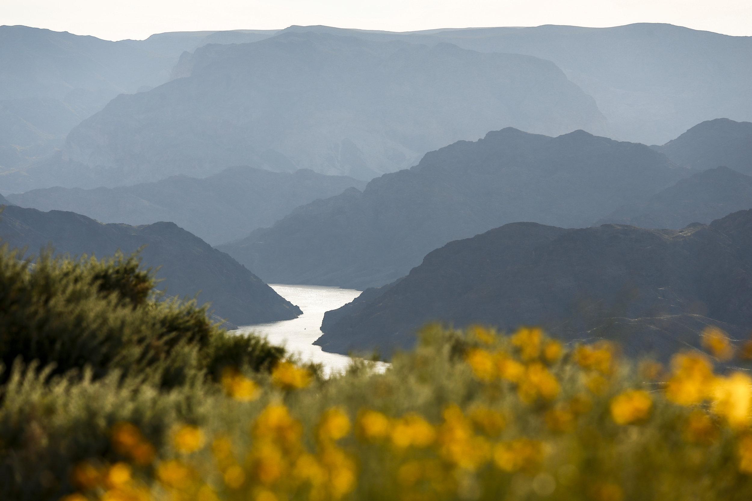 Colorado River carving its path