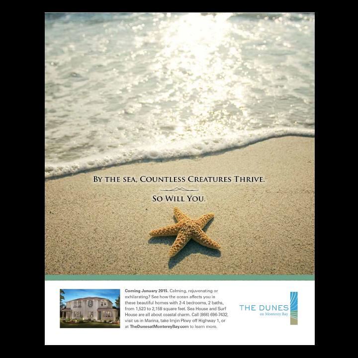 The Dunes starfish at the beach print advertisement