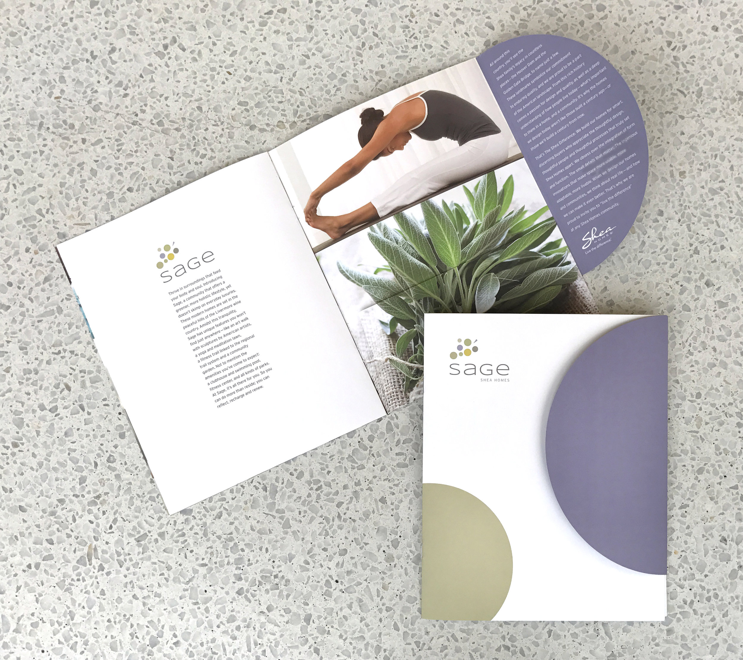 Creative advertising and brochure collateral Sage