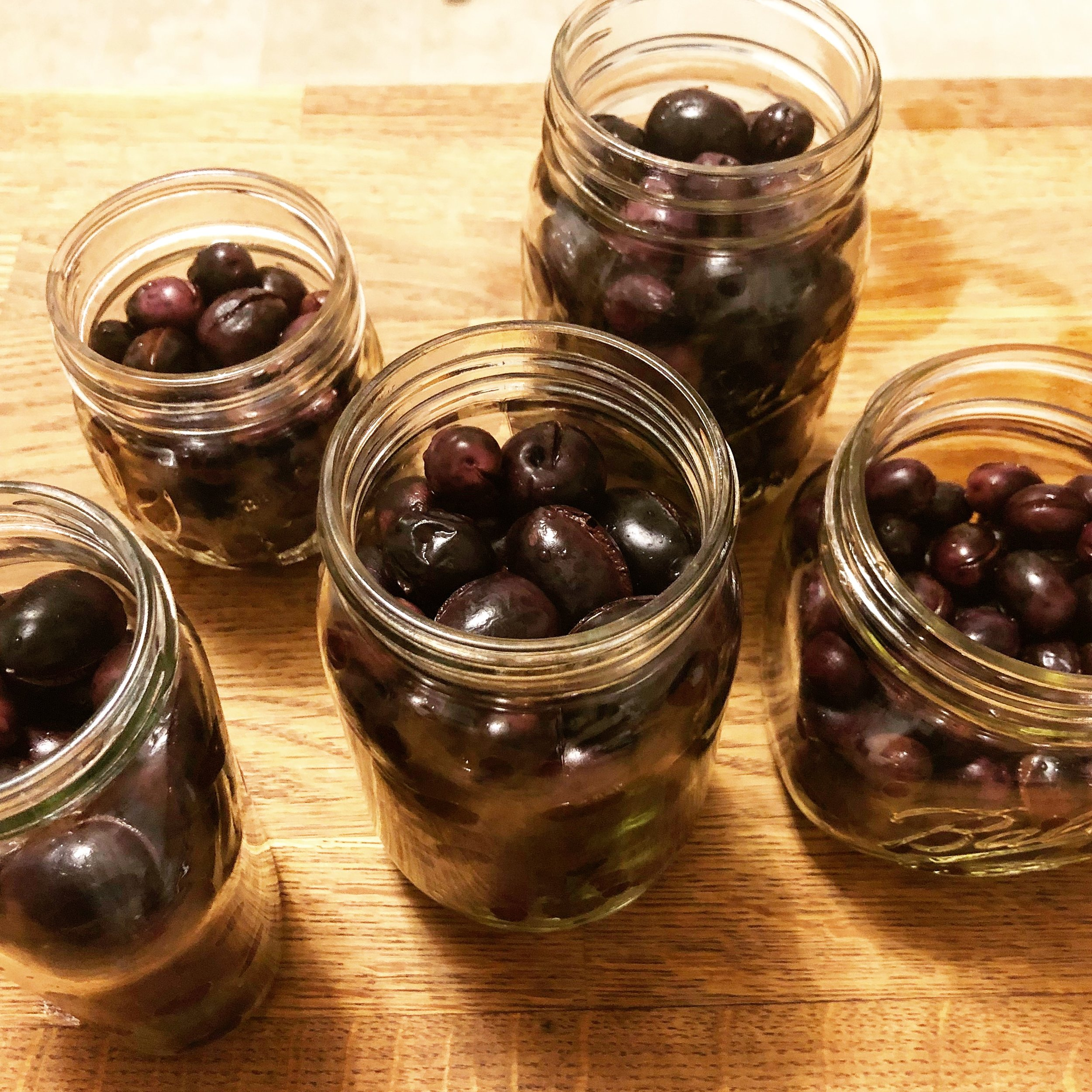 These homemade olives were picked in Folsom, CA at an abandoned orchard.
