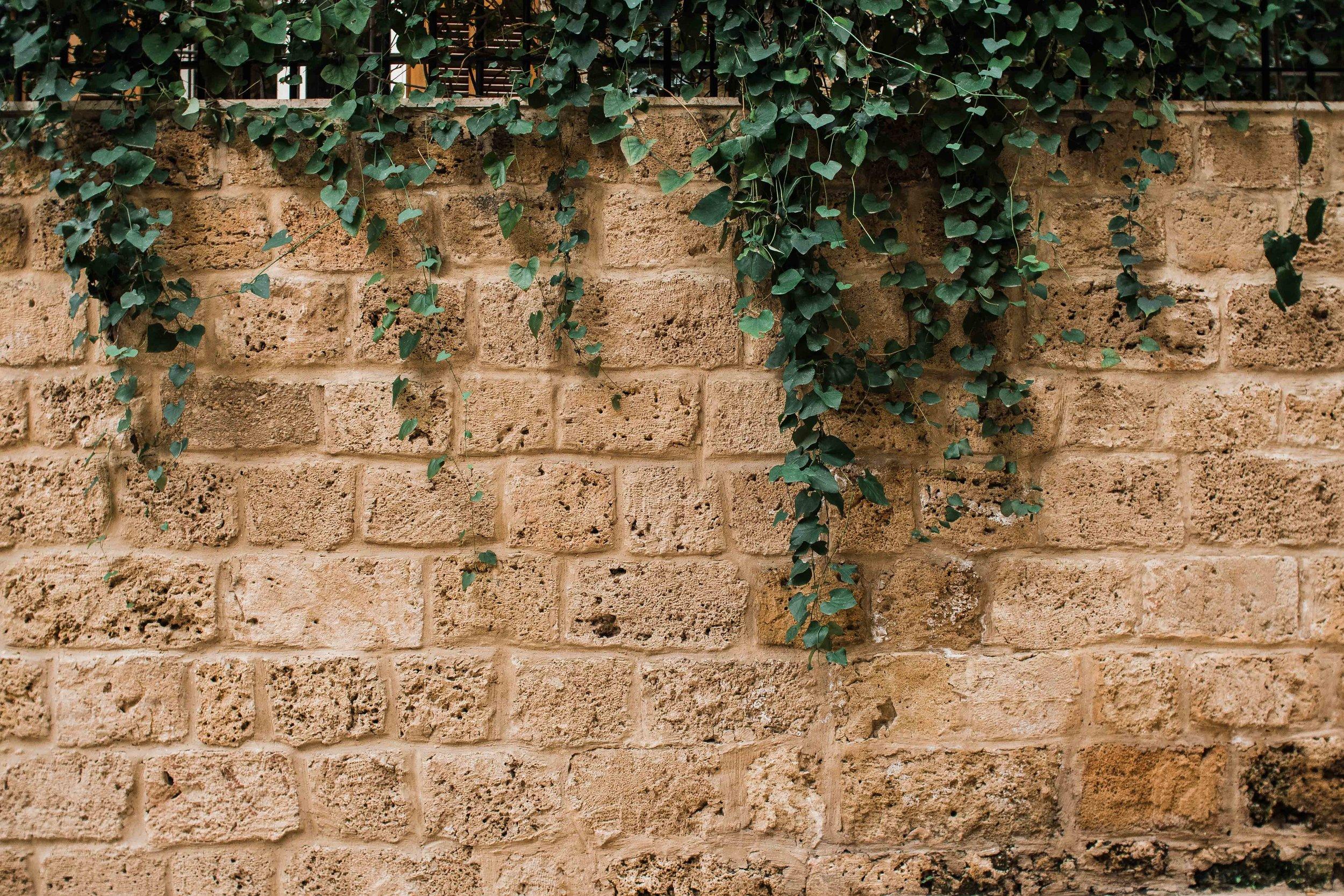 For Blog - Beirut-16.jpg