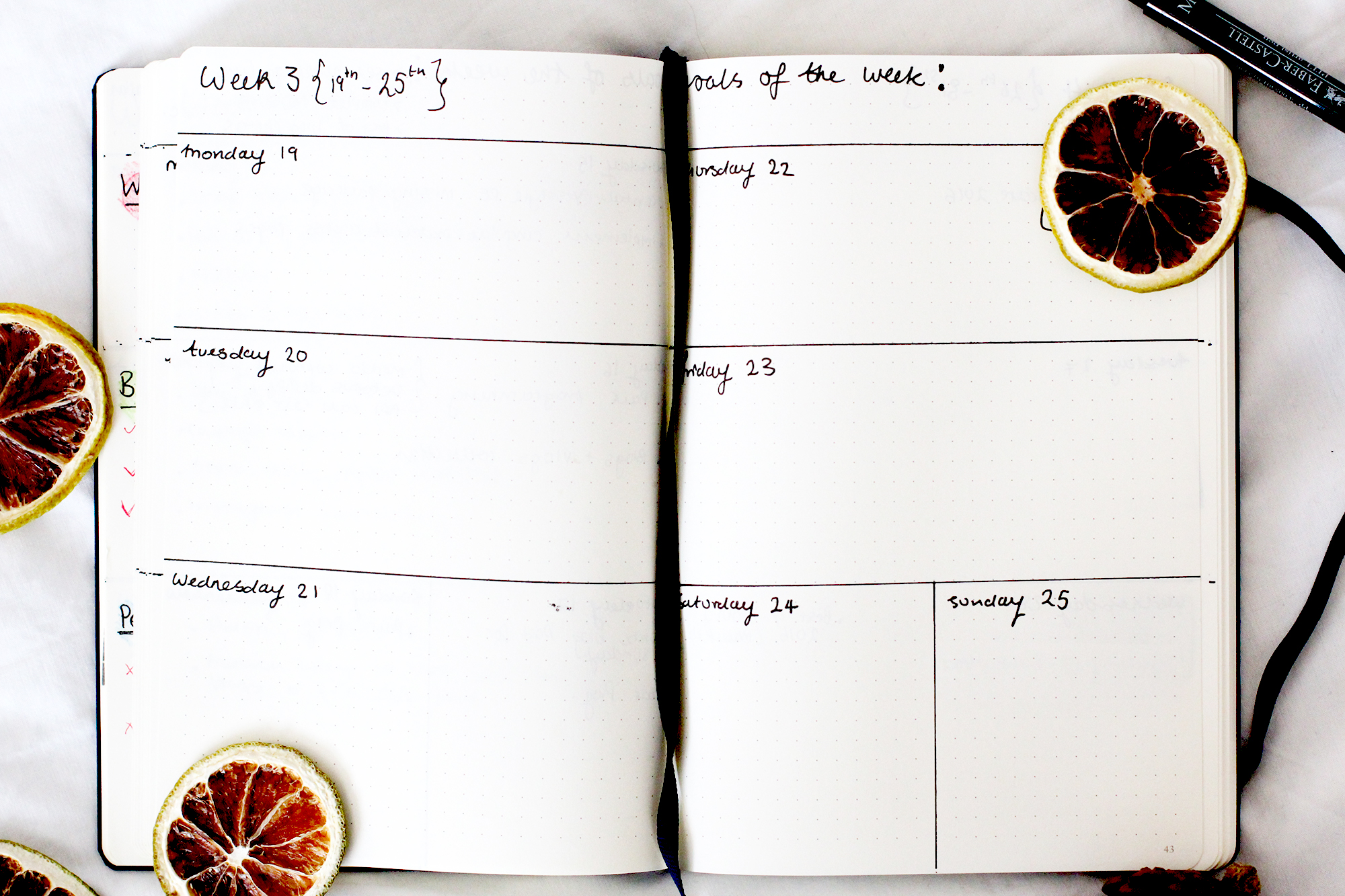 My Bullet Journal Setup + How To Set & Track Goals - Weekly Spread