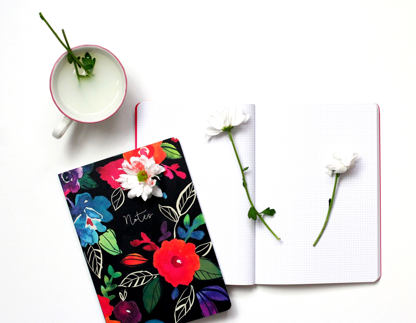 edie & rona stationery notebooks creative writing