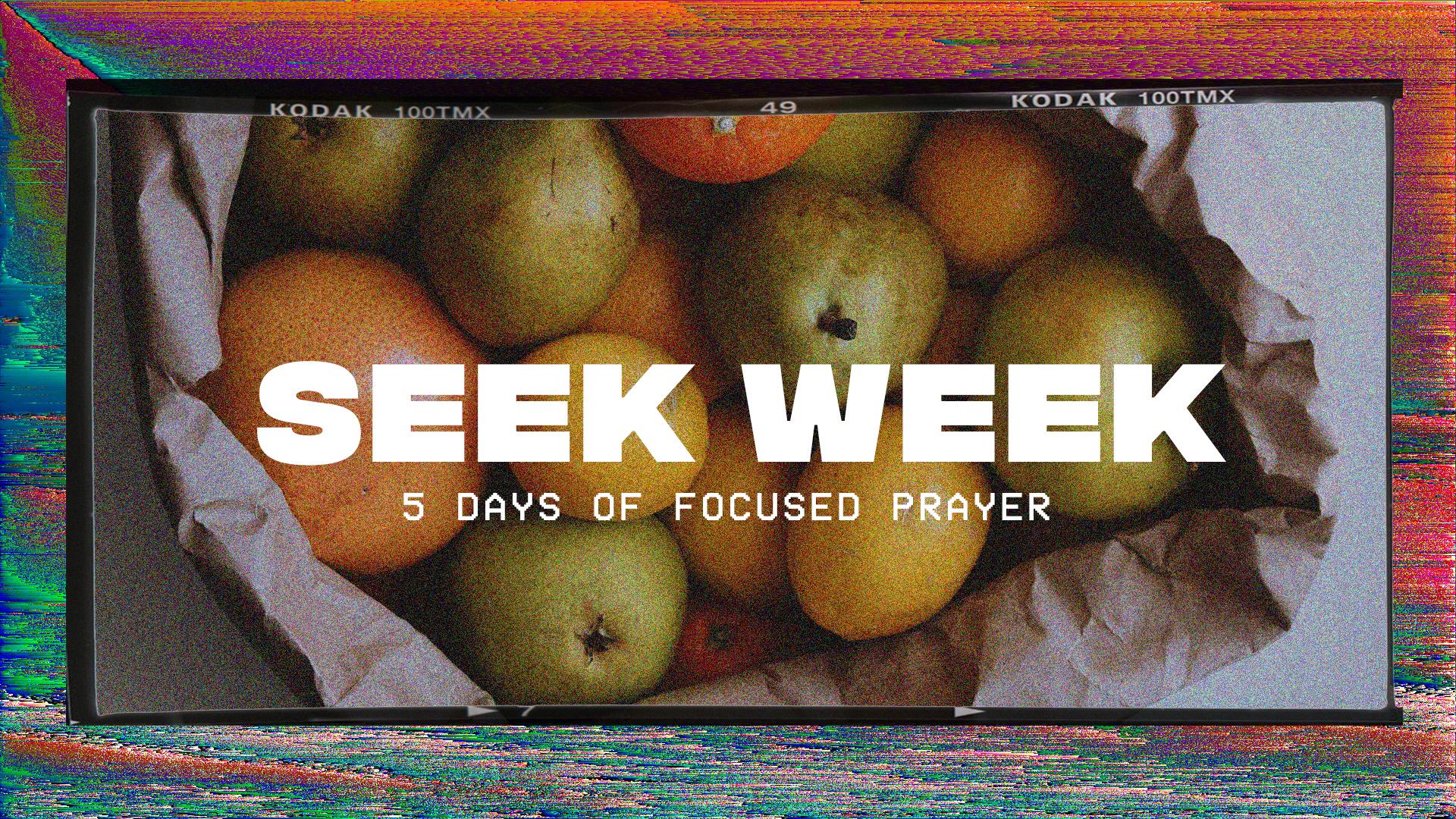 seek week1.jpg