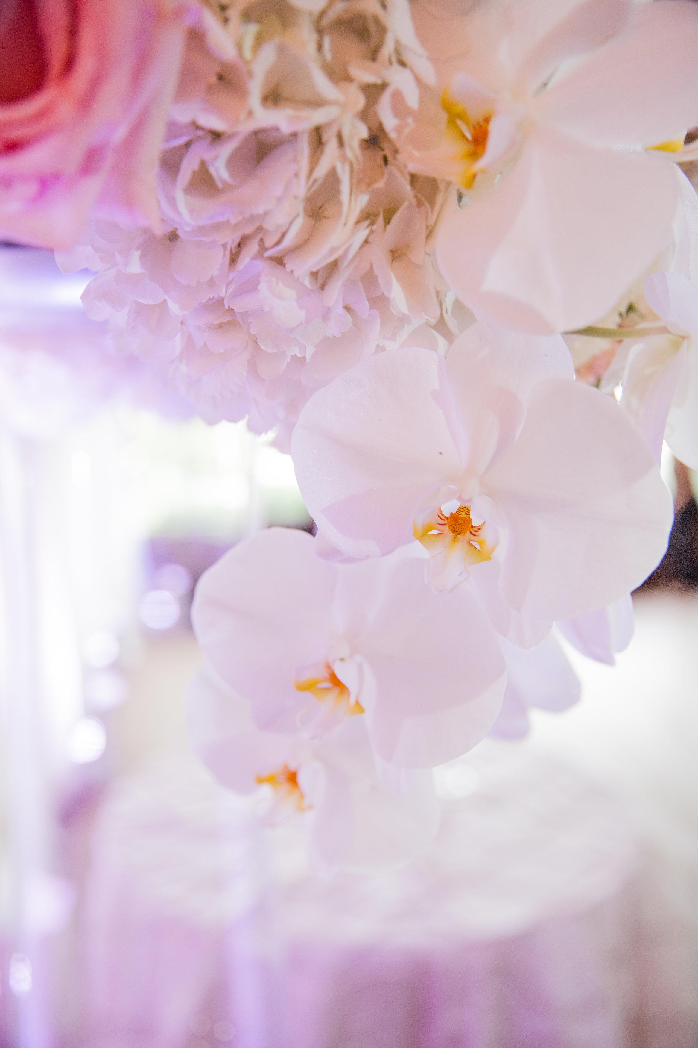Wedding_INIJE-180.jpg