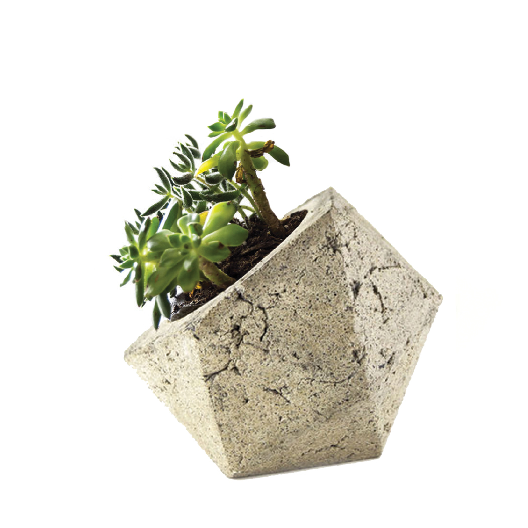 Gift Guide for Her 2016- Simple Geometric Tan Succulent Planter Dish