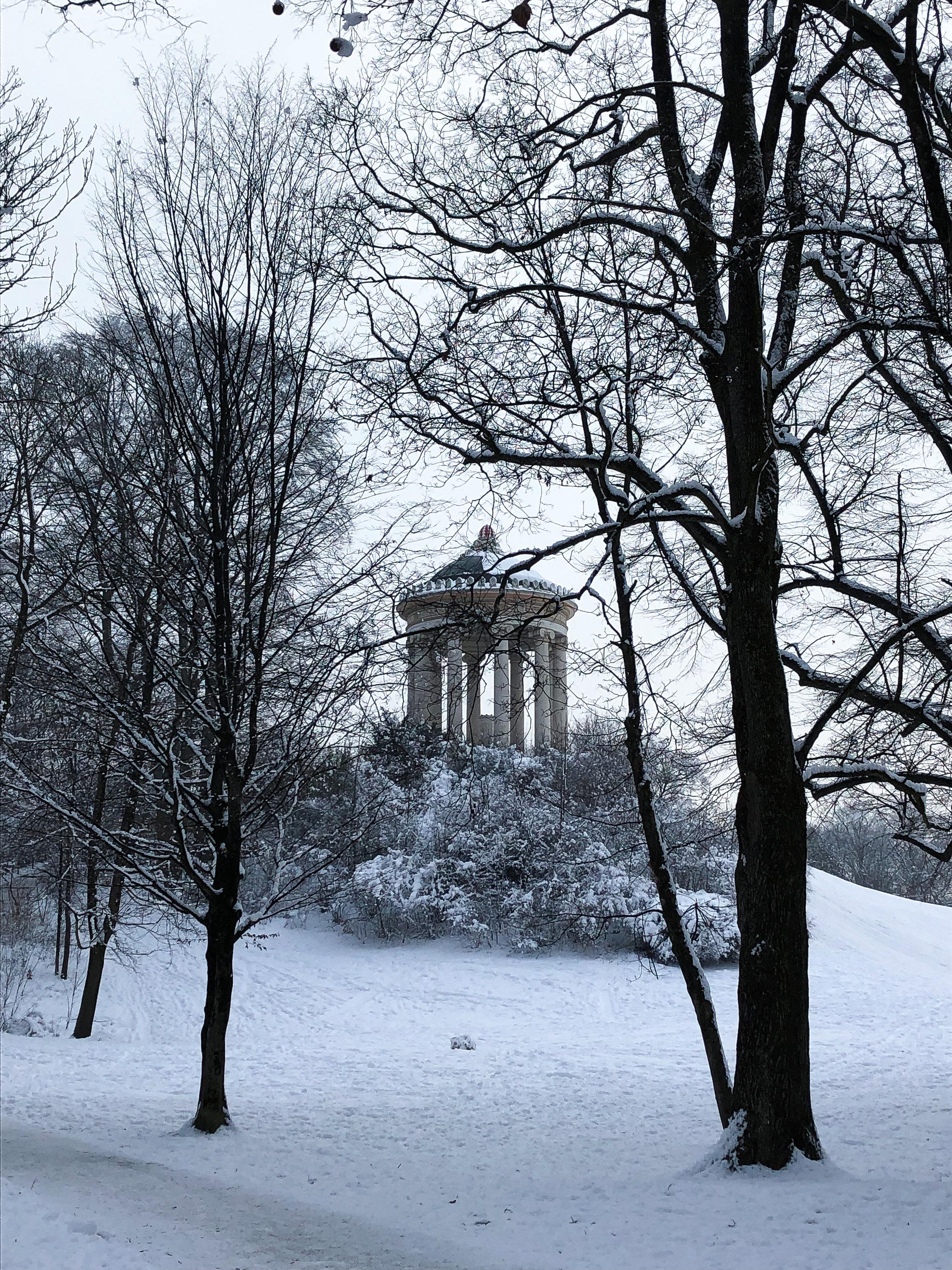 A snowy Englischer Garten in München.