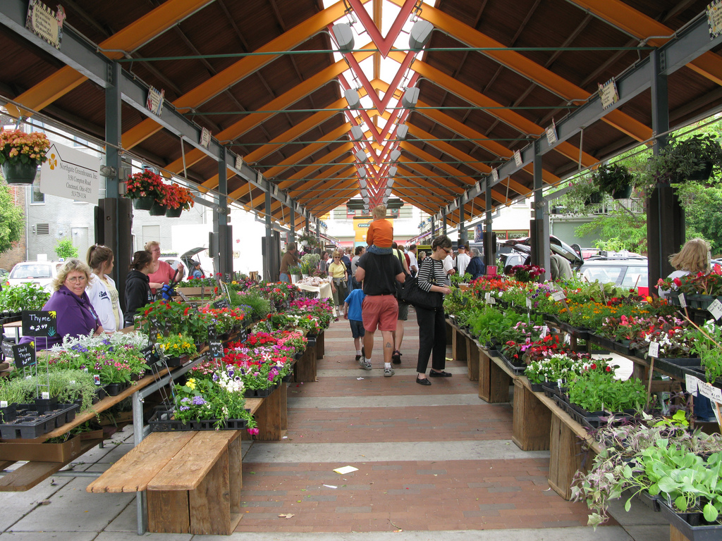 Findlay-farmers-market.jpg