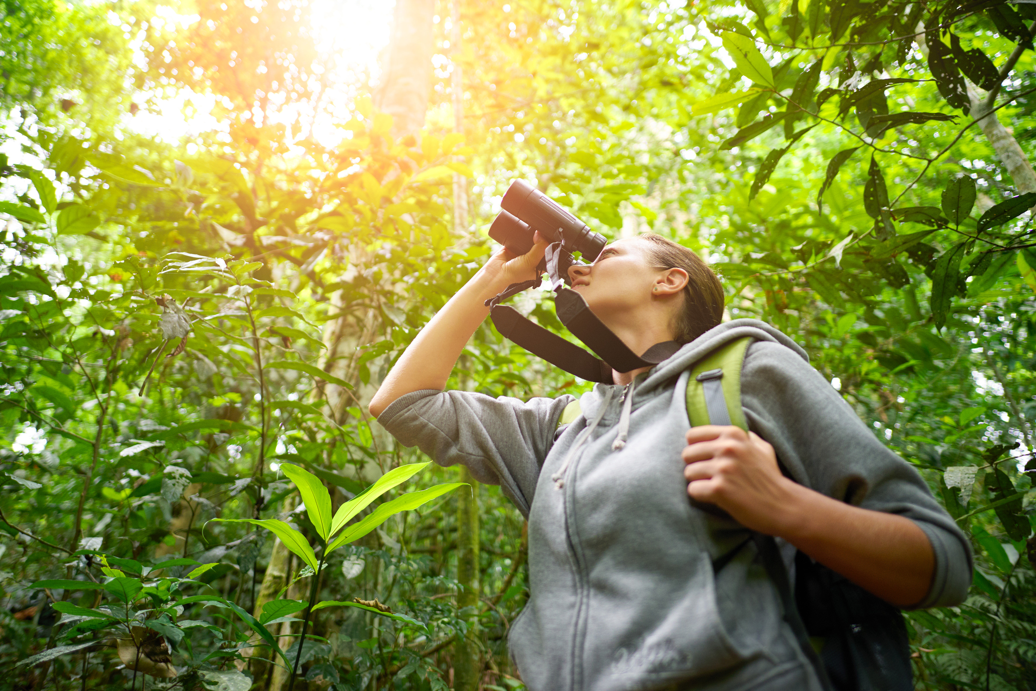 Is the coffee career for young professionals a jungle gym? Or just a jungle?  Photo by Soft_Light iStock Getty Images