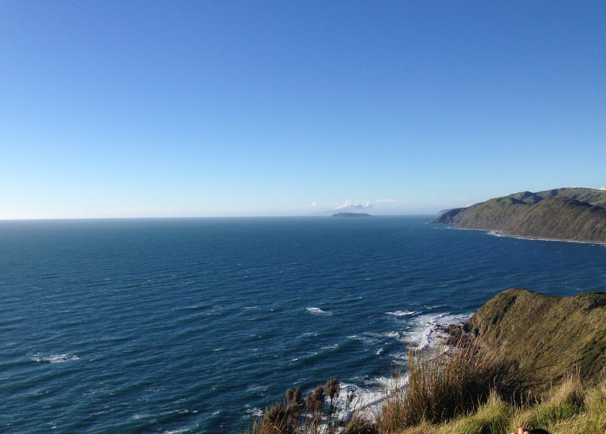 Near Wellington
