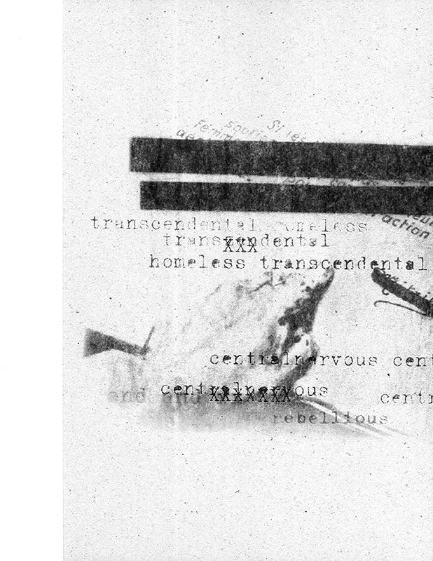 Astrid_Klein_Transcendental.jpg
