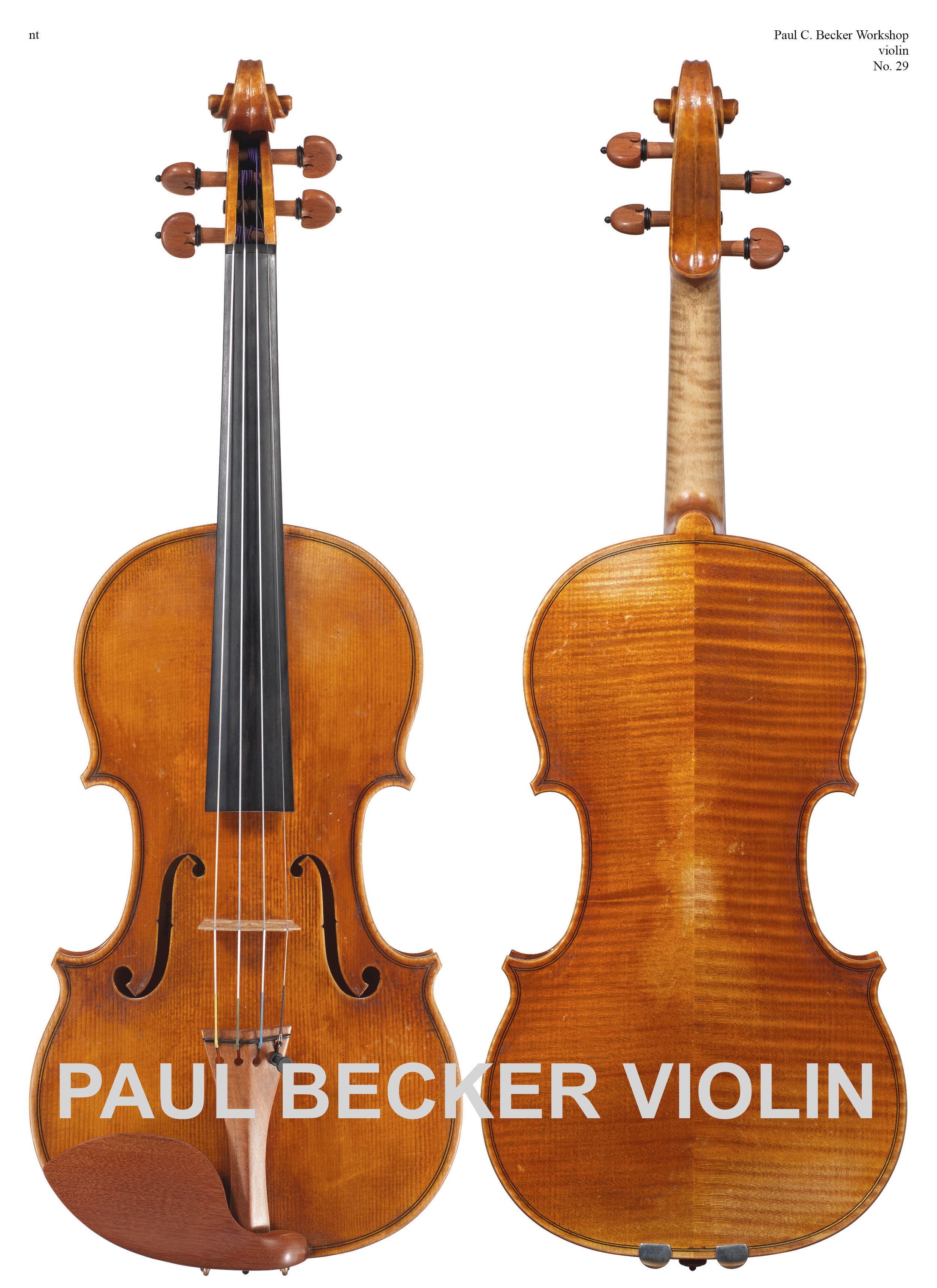 """Paul Becker Workshop No. 29. Strad model with Jeremy Koon's """"Antiqued Varnish"""" - The back in two pieces is of quarter cut maple marked by a medium curl slanted down from the center joint.Varnish is soft in texture and is of a golden-red orange color. Present Value: $15,000"""