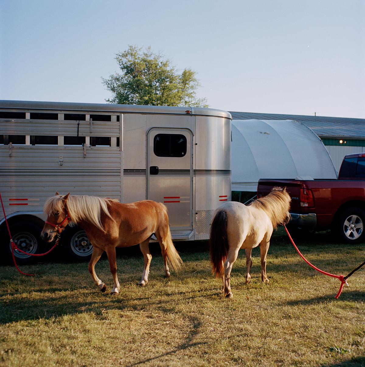 Lucas-County-Fair-Stephanie-Noritz-11.jpg
