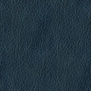 blue-leather.jpg