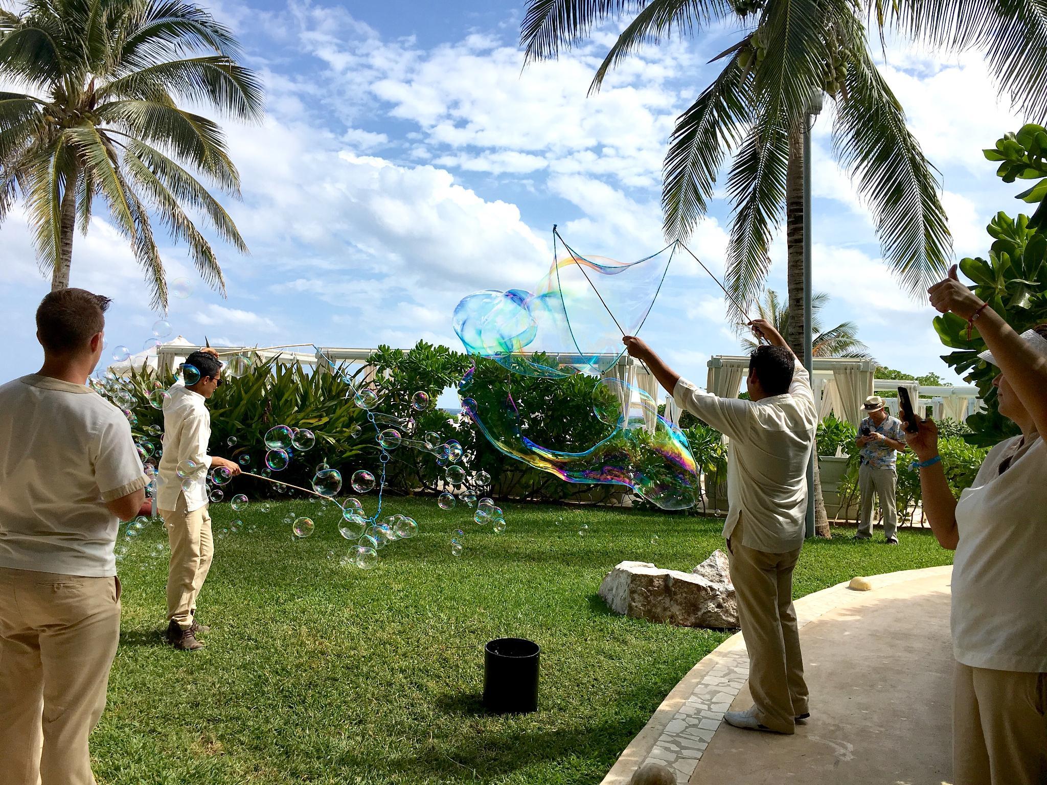 live aqua bubbles.jpg
