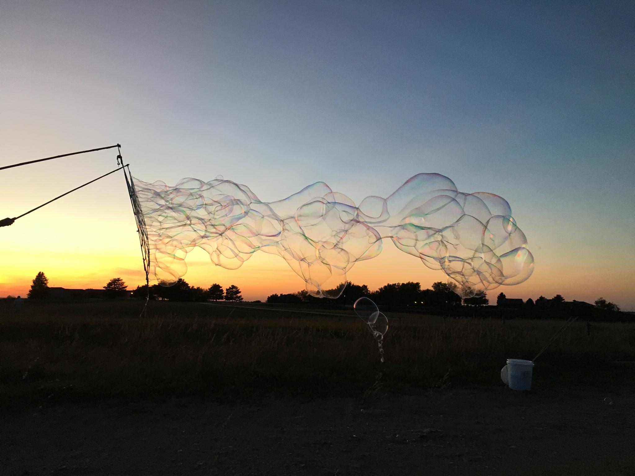 net sunset bub.jpg