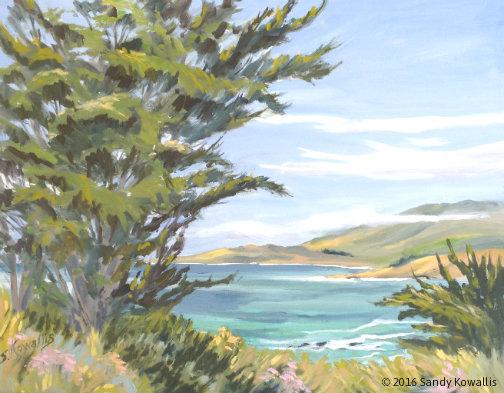 Cypress Near Cambria - oil 11 x 14