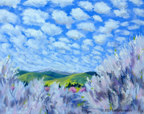 Clouds of Spring - oil - 16 x 20