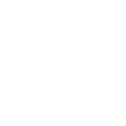 ambulance-side-view.png