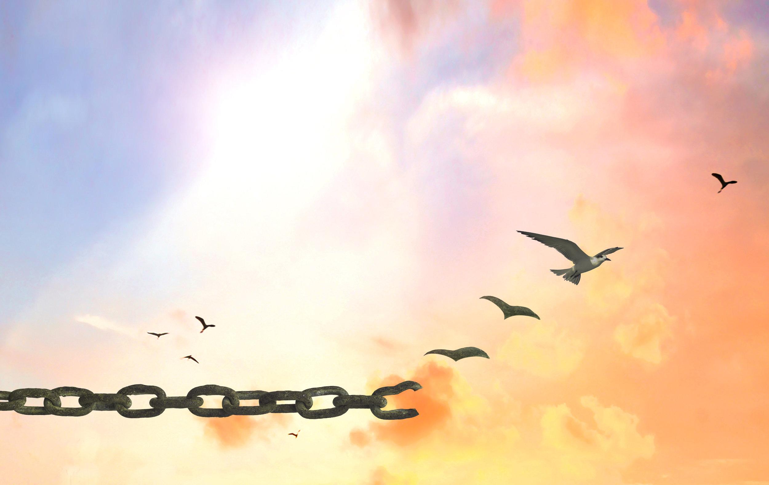 Freedomchain2.jpg