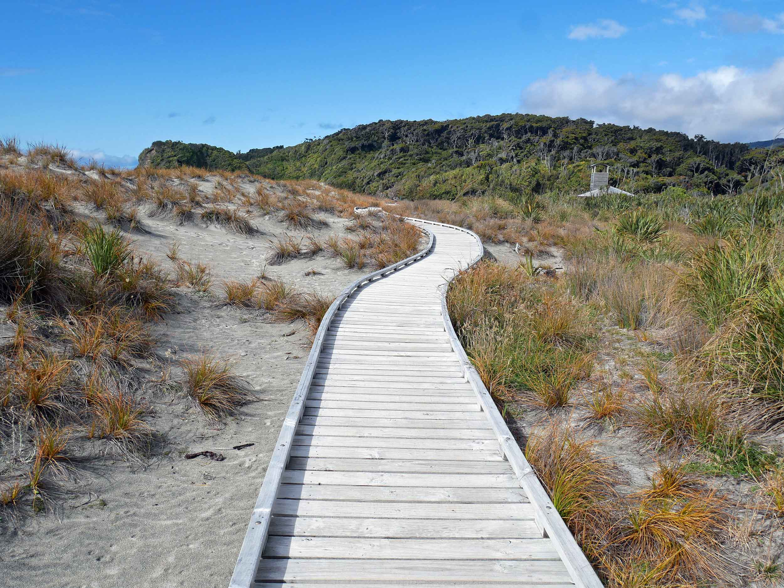 A scenic walk through the Ship Creek dunes with sea grass, driftwood and rocky sands (Jan 5).
