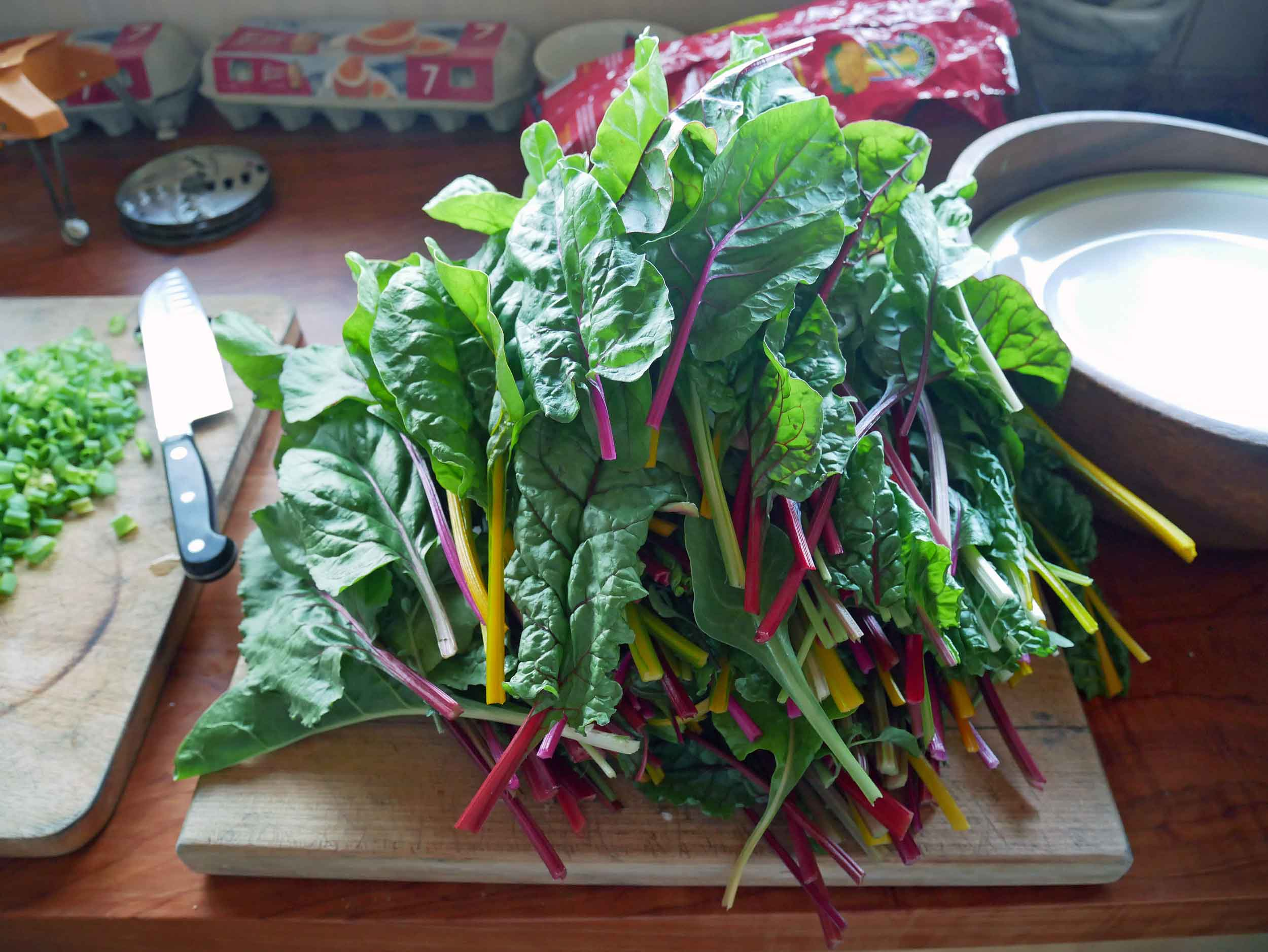 Swiss chard from the fields, which was used on delicious homemade pizzas for dinner.