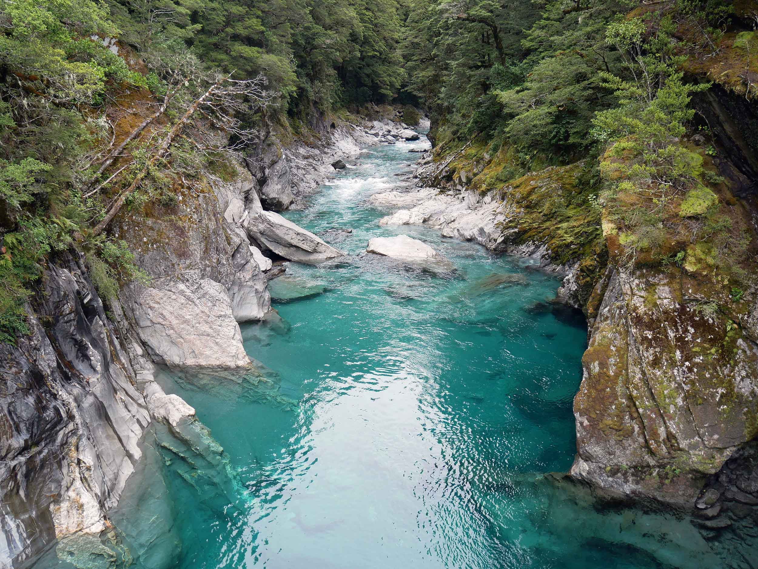 We also took a short walk across another swing bridge to take in the crystal Blue Pools of the Makaroa River (Jan 7).